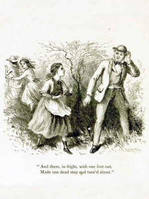 Page 25, The Surprise. illustration by Hammatt Billings, Rural Poems by William Barnes, published by Boston, Robert Brothers 1869